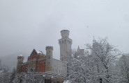 Neuschwanstein Castle Tours